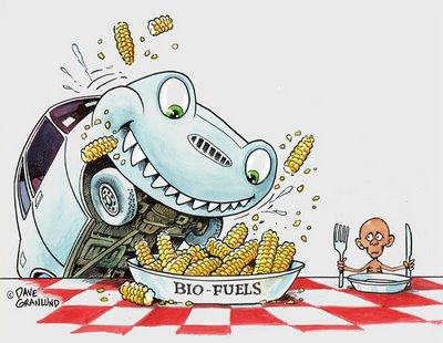 bio fuels