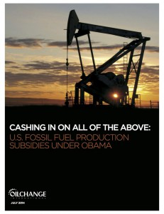 OCI_US_FF_Subsidies_Cover_Small