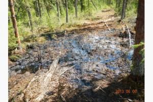oil-spill-300x200