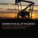 US subsidies report cover