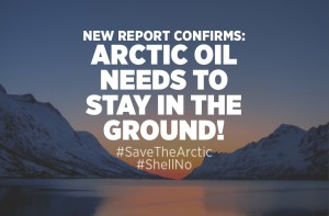 arctic-report-in-the-ground