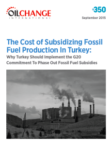 Turkey Subsidies Cover