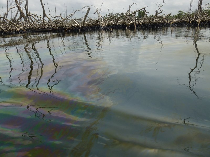 Oil Giant Shell Sued Again Over Nigerian Pollution