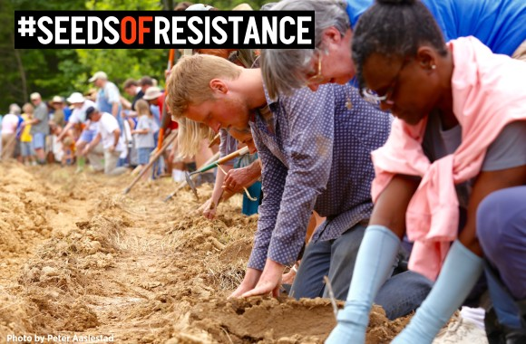 "Planting ""seeds of resistance"" along the proposed route of Dominion's Atlantic Coast pipeline."