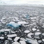 Sea_ice_Antarctica