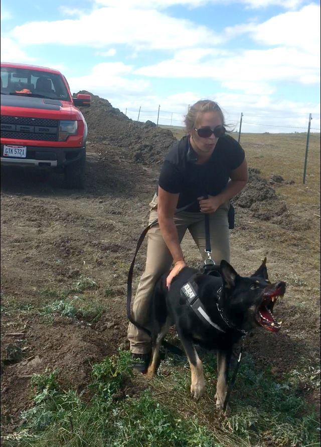Dakota Access Uses Attack Dogs Against Natives In The Name Of Oil