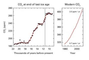 C: WMO Figures