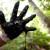 C: Caroline Bennett / Rainforest Action Network