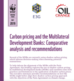 Briefing: Carbon Pricing and the Multilateral Development Banks