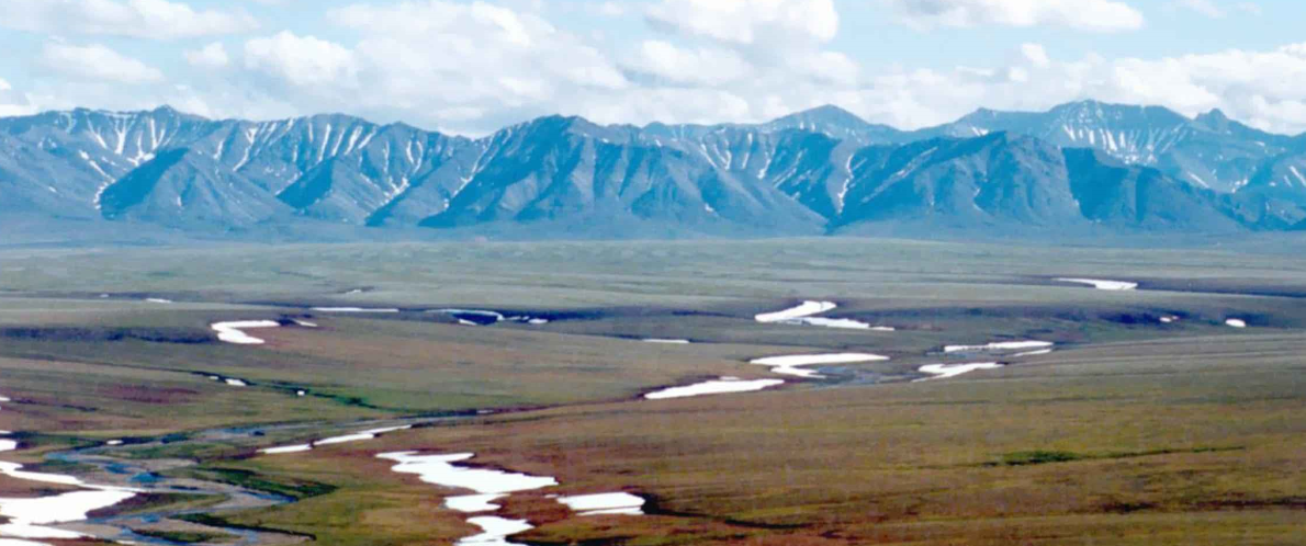 Haaland Suspends ANWR Drilling Leases Approved by Trump